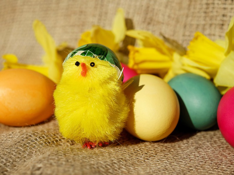 easter-theme-2136054_960_720