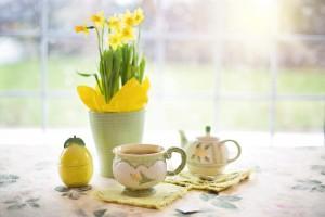 daffodils-1316127_960_720
