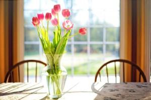 tulips-2239234_960_720