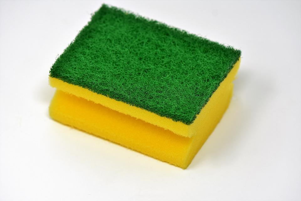 sponge-3081411_960_720